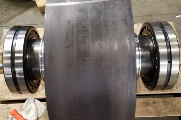 Trunnion Shaft and Bearings